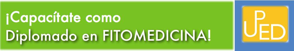 Diplomado en Fitomedicina