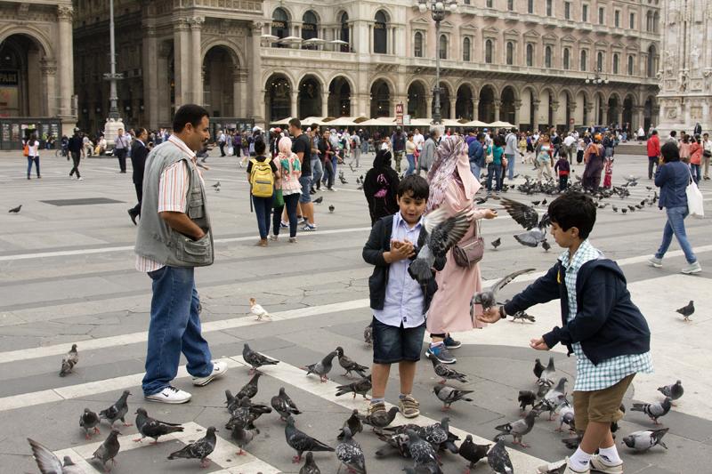 Милан - голуби на площади