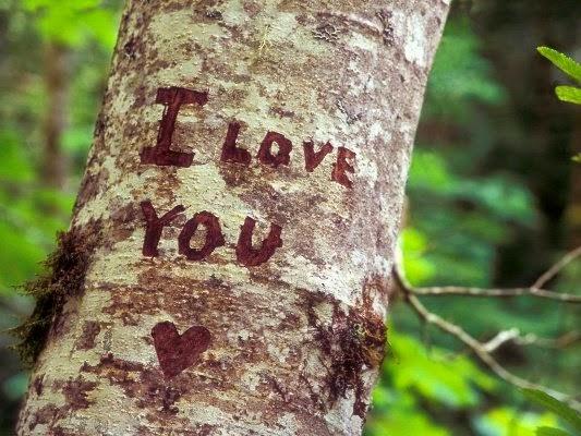 I love you tree Hãy lưu ý điều nàu nếu muốn ghi điểm trong mắt bạn gái