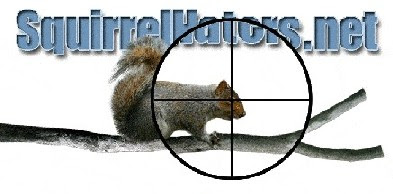 squirrelhaters