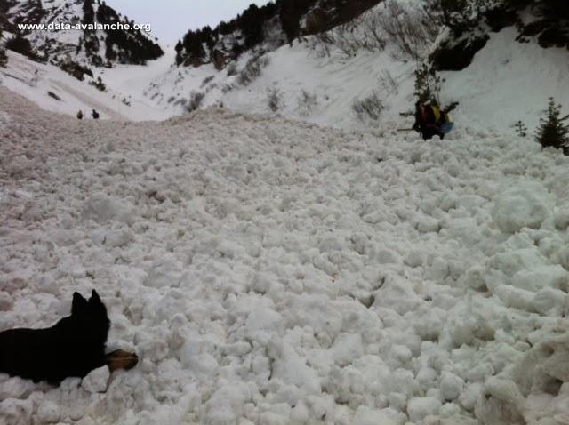 Avalanche Vanoise, secteur Pralognan La Vavoise, Combe de Pariettes - Photo 1