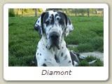 Diamont