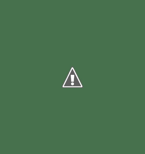 18 05 2013 40+copy - Кошки ))