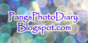 PangsPhotoDiary