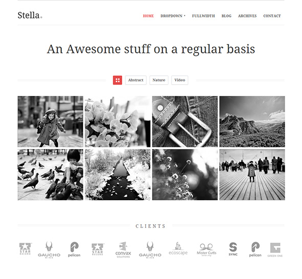 Stella Responsive WordPress Theme