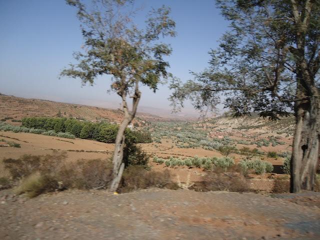 marrocos - Marrocos 2011 DSC03316