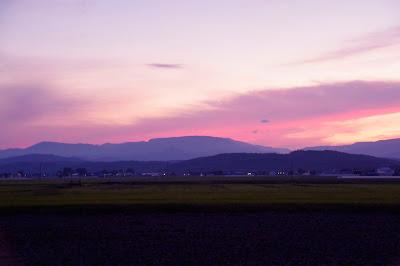 淡い紫のグラデーションカラーに 包まれた、柔らかな雲