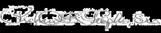 Bishop Signature (Transparent) (2).png