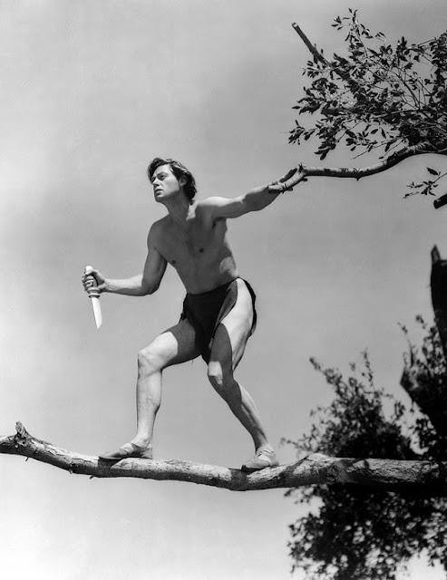 Tarzan545.jpg