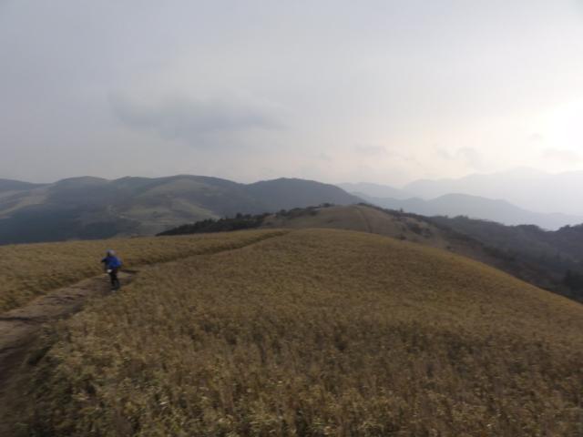 Izu trail journey 伊豆山領線