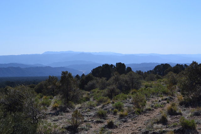 Cuyama River in the distance