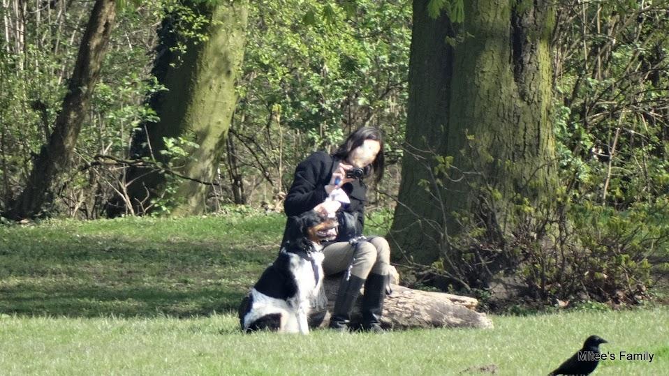 Balades canines en Nord (59)/Pas de Calais (62) - Boulogne-sur-Mer, Calais et Lille - Page 4 DSC01798-001
