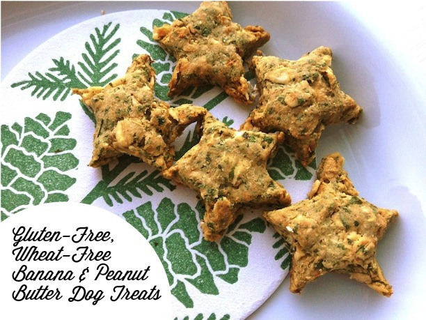 recipe for banana and peanut butter dog treats gluten-free, wheat-free, dairy-free