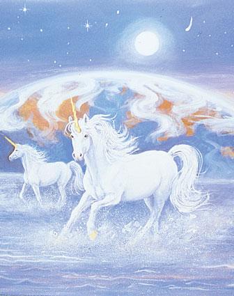 unicorn_aug05%252520%25252818%252529.jpg