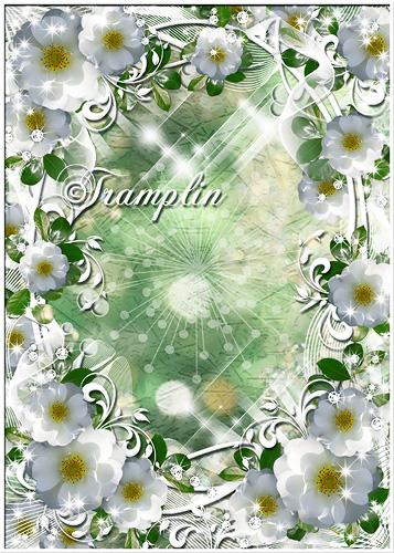 Рамка  для фото с белыми цветочками - Лето зыблется цветами, в небе льются света волны