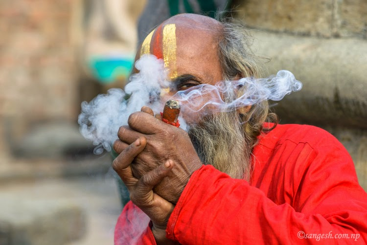 Sadhu taking the Ganja puff during Shivaratri