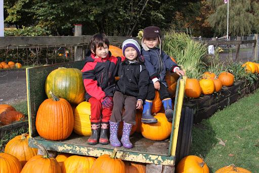 IMG_0456-2012-10-27-22-45.JPG