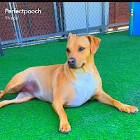 Brenda J.'s avatar