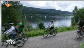 Fahrradfahrer und Fahrradfahrerinnen unterwegs.