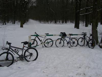 Încă o tură de iarnă în pădurea Cernica