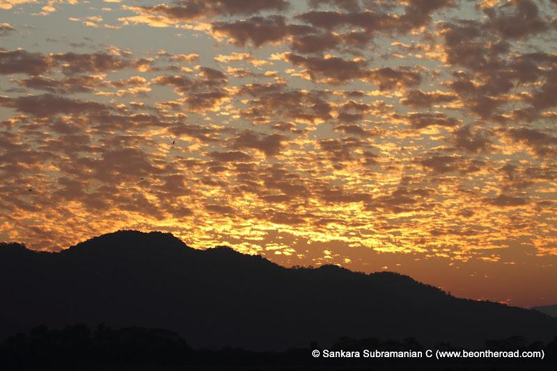 Vivid and Vibrant Evening Sky at Kaziranga - 6
