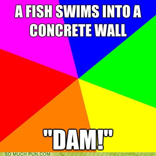 a poster that says.. a fish swims into a concrete wall...dam