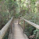 Footbridge (64415)