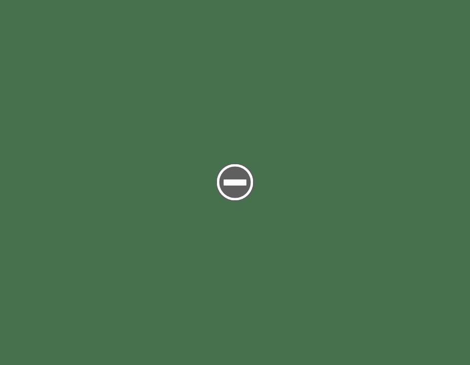 Ever Ready Safety Razor IMG_0731+%2528Custom%2529