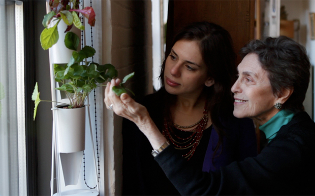 Windowfarms Brings Fresh Food Into Your Apartement