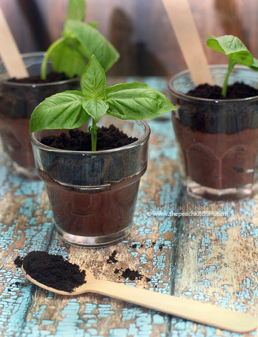 Dirt Cups made with crushed oreos and pudding | www.thepeachkitchen.com