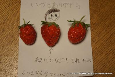 自宅でできたイチゴをお母さんにプレゼント