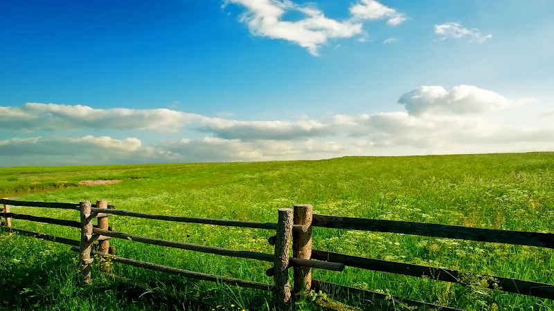 diana's spring meadow wallpaper, landscape, fence, country