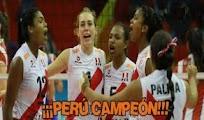 Repeticion Peru Brasil final de Voley femenino