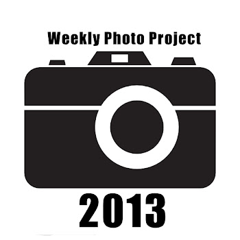 Who is Weekly Photo Project 2013?