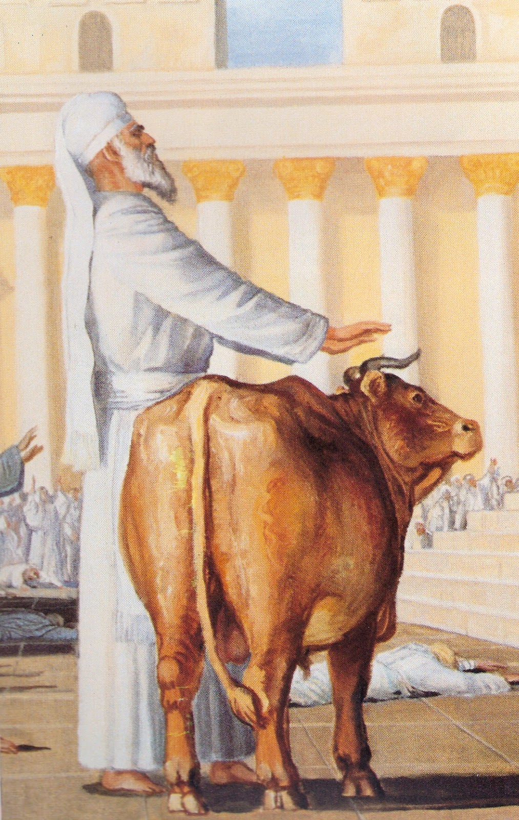 bull symbolism in bible mountjoy ministries the messiah and the ritual of israel 10505