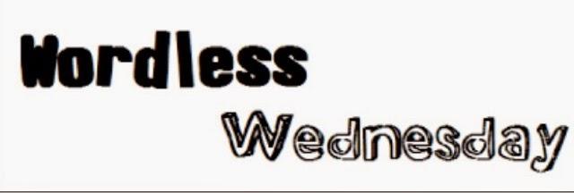 MAKSUD WORDLESS WEDNESDAY