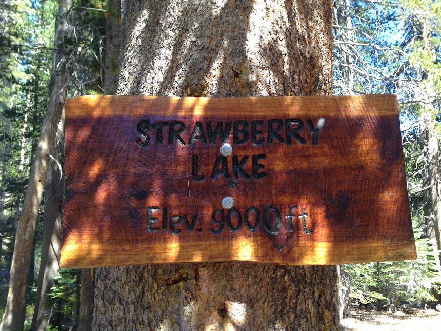 shaver lake single parents Instantly search and view photos of all homes for sale in shaver lake, ca now shaver lake, ca real estate listings updated every 15 to 30 minutes.
