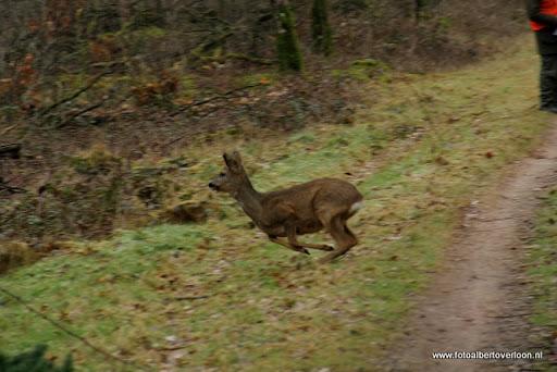 vossenjacht in de Bossen van overloon 18-02-2012 (18).JPG