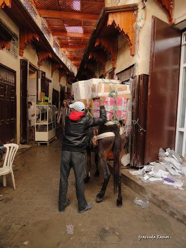 marrocos - Marrocos 2012 - O regresso! - Página 8 DSC06844