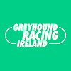 IrishGreyhoundBoard