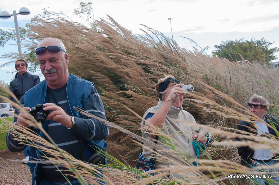 В устье реки Яркон. Экскурсия по реке Яркон в Тель Авиве и Яффо. Гид в Израиле Светлана Фиалкова.