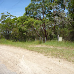 Track intersection near the old Pacific Hwy on the Wallarah Pennisula (388727)