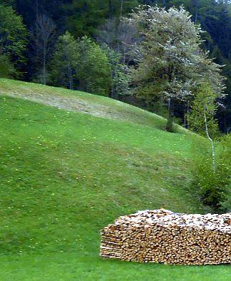 Aufgeschichtetes Holz im Inntal bei Pfunds