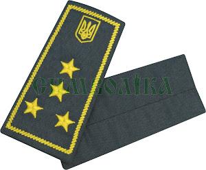 Погони / митна служба/  інспектор 1 рангу/ сірі