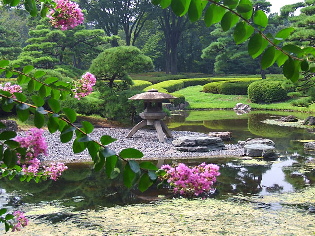 What planet are you living on the japanese garden for Japanese garden designs