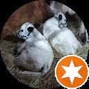 Jeff S.,AutoDir