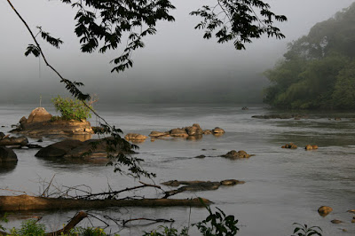 Guyane en 2008