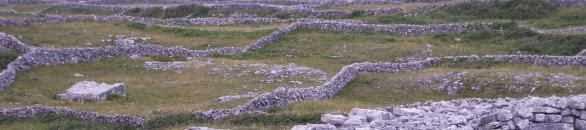 Felder auf Inishmore, Aran Islands, Irland
