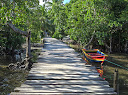 One of the paths in the middle of Ile Aux Nattes, beautiful and rustic.