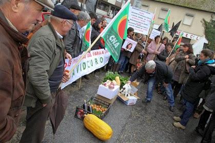 Viticultores do Douro pagam à Segurança Social com batatas e legumes